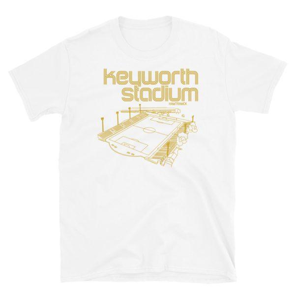 Keyworth Stadium and Detroit City FC t-shirt