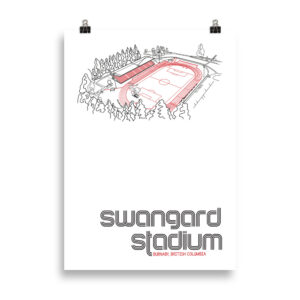 Large Swangard Stadium and TSS Rovers Football Print